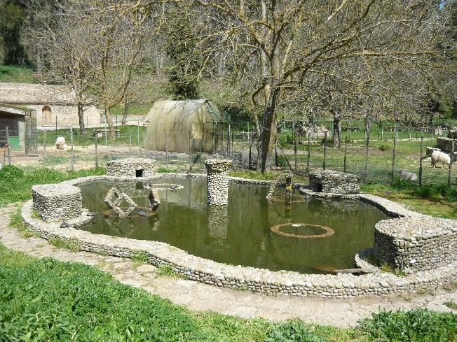 Parco ronza for Laghetto tartarughe inverno